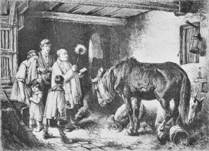 Berwitched cattle 1875